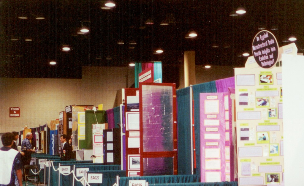 ISEF Science Fair Example Display Boards
